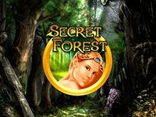 Онлайн игра Secret Forest  _