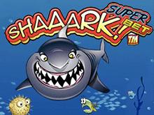 Игровой аппарат Shaaark Superbet